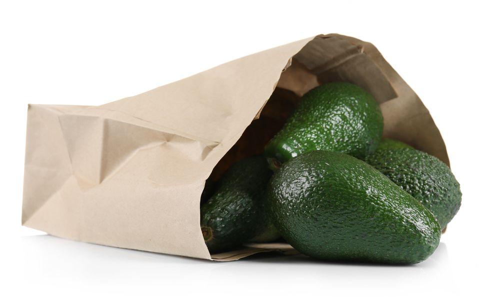 Avocados in Paper Bag